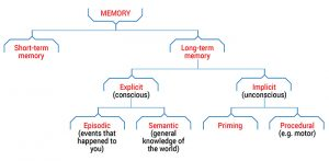 Types of Memory Flow Chart
