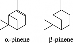 Structural formulas of alpha-pinene and beta-pinene